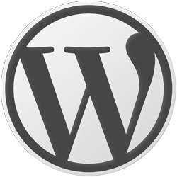 Wordpress website of webshop